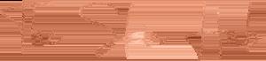 The Skin Hub Logo Home